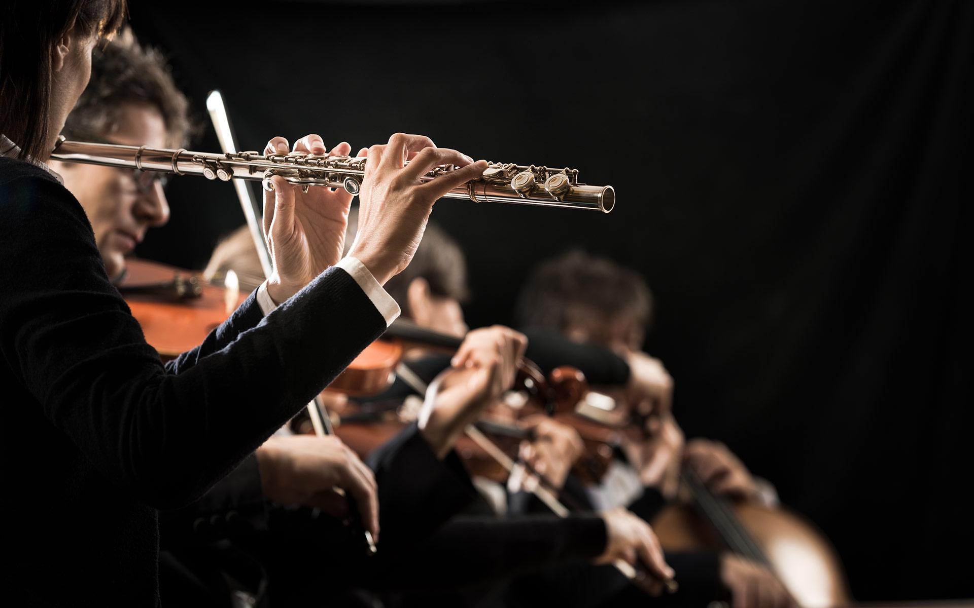 Engagieren Sie uns für Ihr Konzert